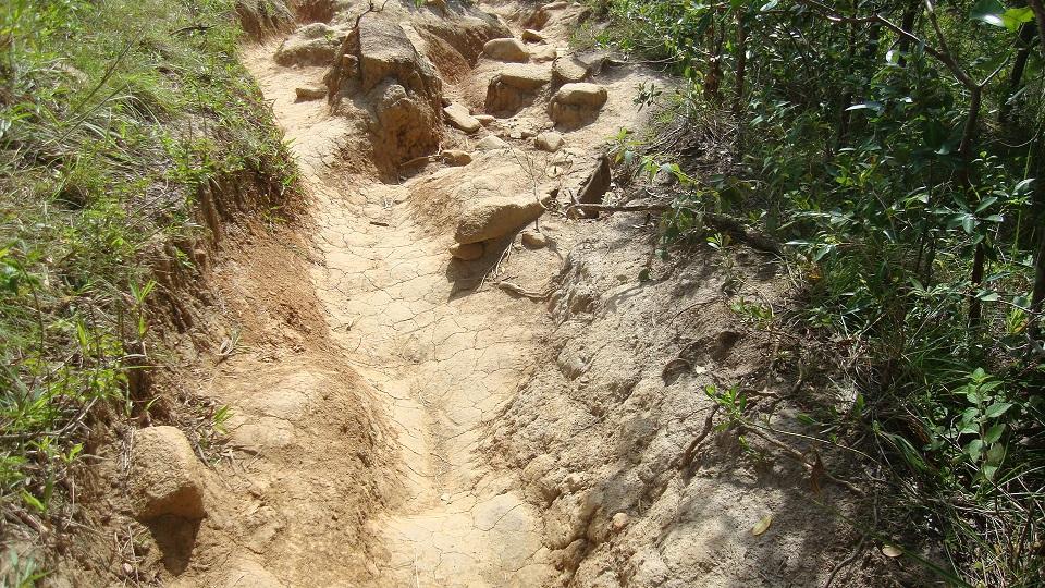 A trilha 33